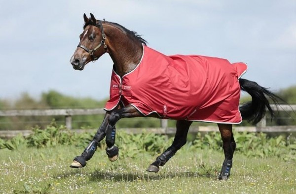 Horseware Regendecke Turnout AMIGO HERO ACY 50 g
