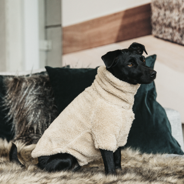 Kentucky Hunde Sweater TEDDY FLEECE