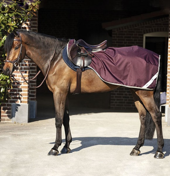 Horseware Amigo Ripstop COMPETITION SHEET